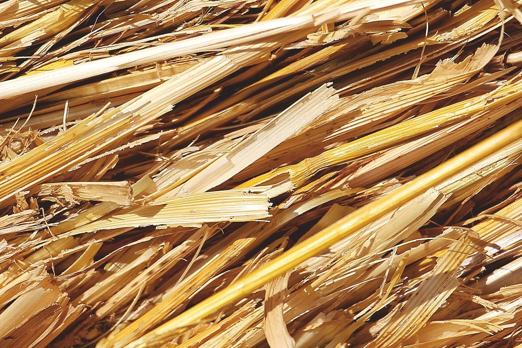 straw gives more biogas global recycling